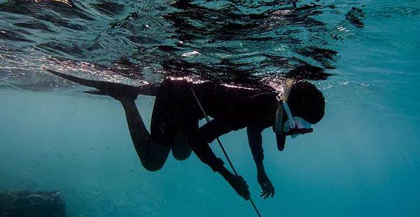 Classe privada 3 hores d'iniciació a la pesca submarina.